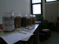 Mondocompost Seminario L\'Aquila 7-4-2011 (7)